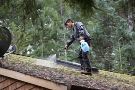Power Washing & Roof Cleaning Services